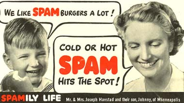Las delicias del Spam (para guionistas sin imaginación)