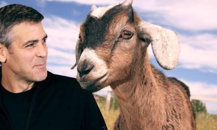 The men who stare at goats, el lado esotérico del Ejército estadounidense [trailer]