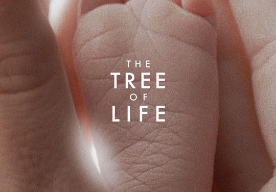 The Tree of Life, trailer del nuevo film de Terrence Malick